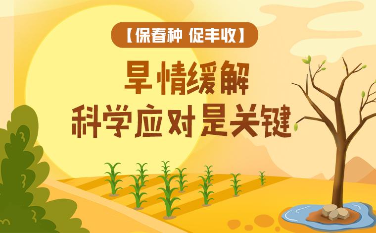 【保春種 促豐收】旱情緩解 科學應對是關鍵