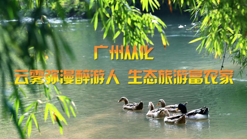 廣州從化:雲霧彌漫醉遊人 生態旅遊富農家