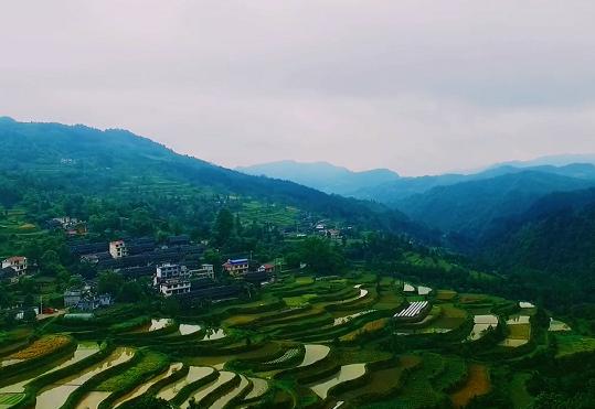 """竹坡梯田:湘黔交界之地的""""最美""""弧線"""
