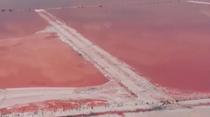 克裏米亞:純凈夢幻 粉紅色鹽湖驚艷遊客