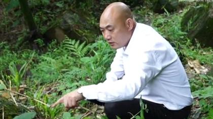 """""""種田CEO""""的美麗鄉村夢"""