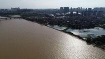 江西:水位高出堤頂1米多 洪水危及鄱陽縣城