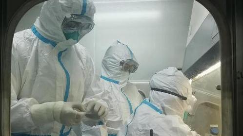 北京:6月11日以來全市完成1188萬人核酸檢測