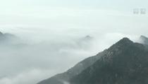 泰山之巔出現雲海奇觀