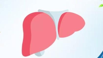 世界肝炎日丨你了解病毒性肝炎嗎?