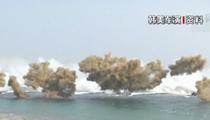 韓美聯合軍演推遲兩天舉行