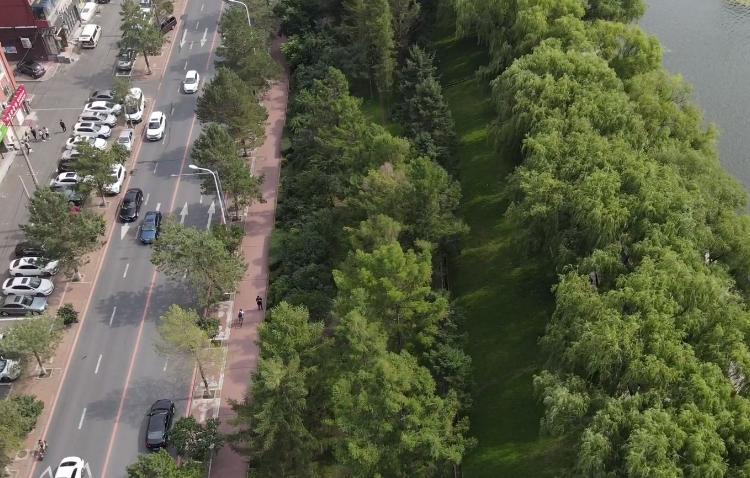 公園拆圍欄 增通道 設綠植 綠色更親民