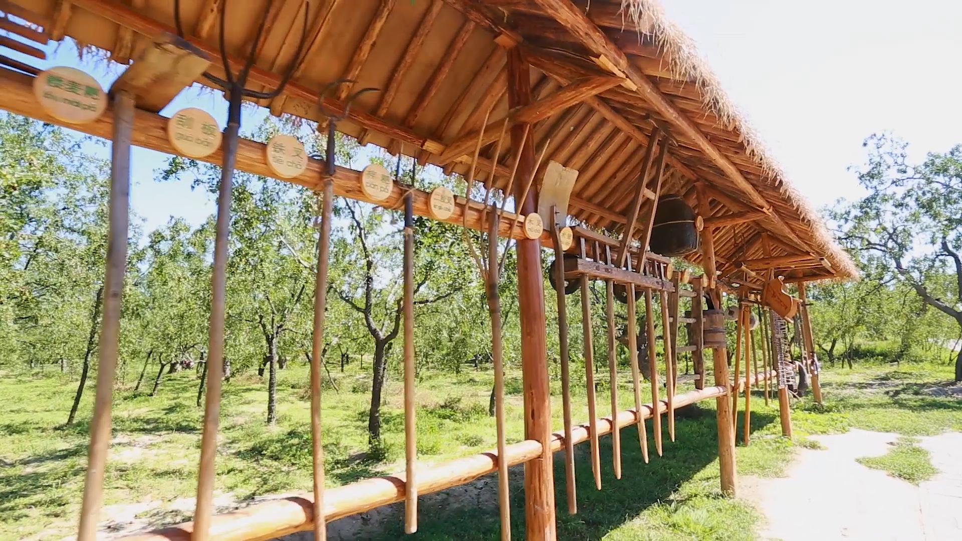在板棗貢園感受千年農耕文化