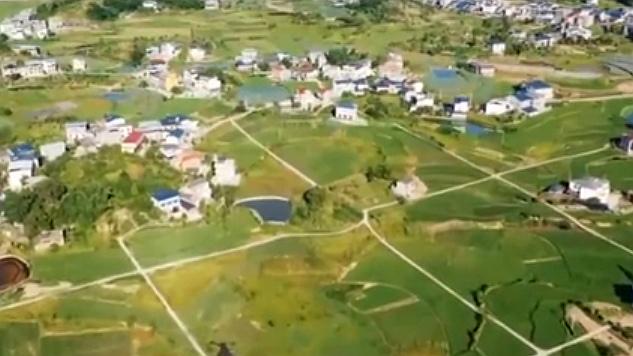 重慶開州:稻田漸次金黃 山村美如圖畫