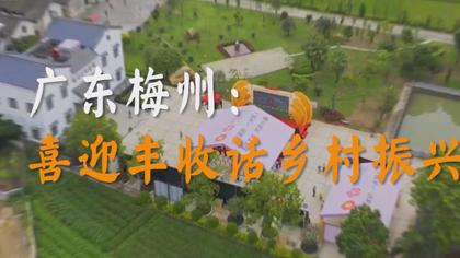 廣東梅州:喜迎豐收話鄉村振興