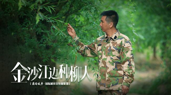 【微紀錄·雲南故事】金沙江邊種柳人