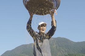 """微視頻:""""最美山鄉""""的農耕文化之美"""