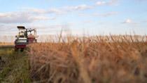 """智慧農業""""參北鬥""""——北鬥衛星導航係統助力現代化農業轉型升級"""