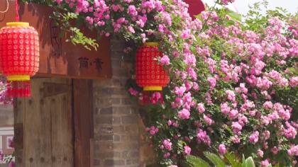 """秦皇島北戴河村:插上藝術翅膀""""騰飛""""的小村莊"""