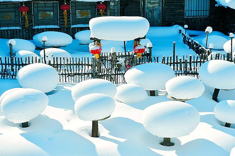 """雪中""""雪鄉""""盛裝迎開園"""