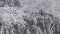 四川多地降雪啦! 瀘州古藺:冰雪扮靚山林