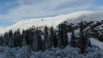 新疆巴州:鞏乃斯國家森林公園雪後美如童話