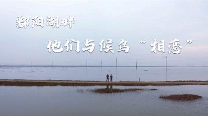 """鄱陽湖畔,他們與候鳥""""相戀"""""""