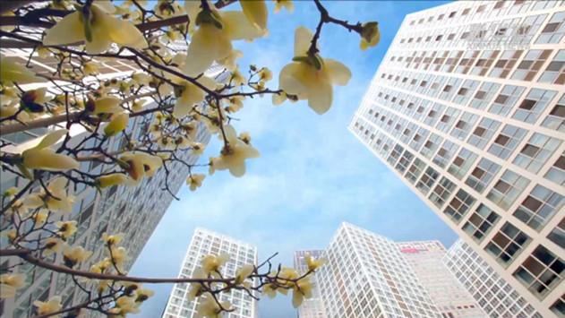 首都功能核心區街道辦事處轄區常住人口原則上不超過10萬人