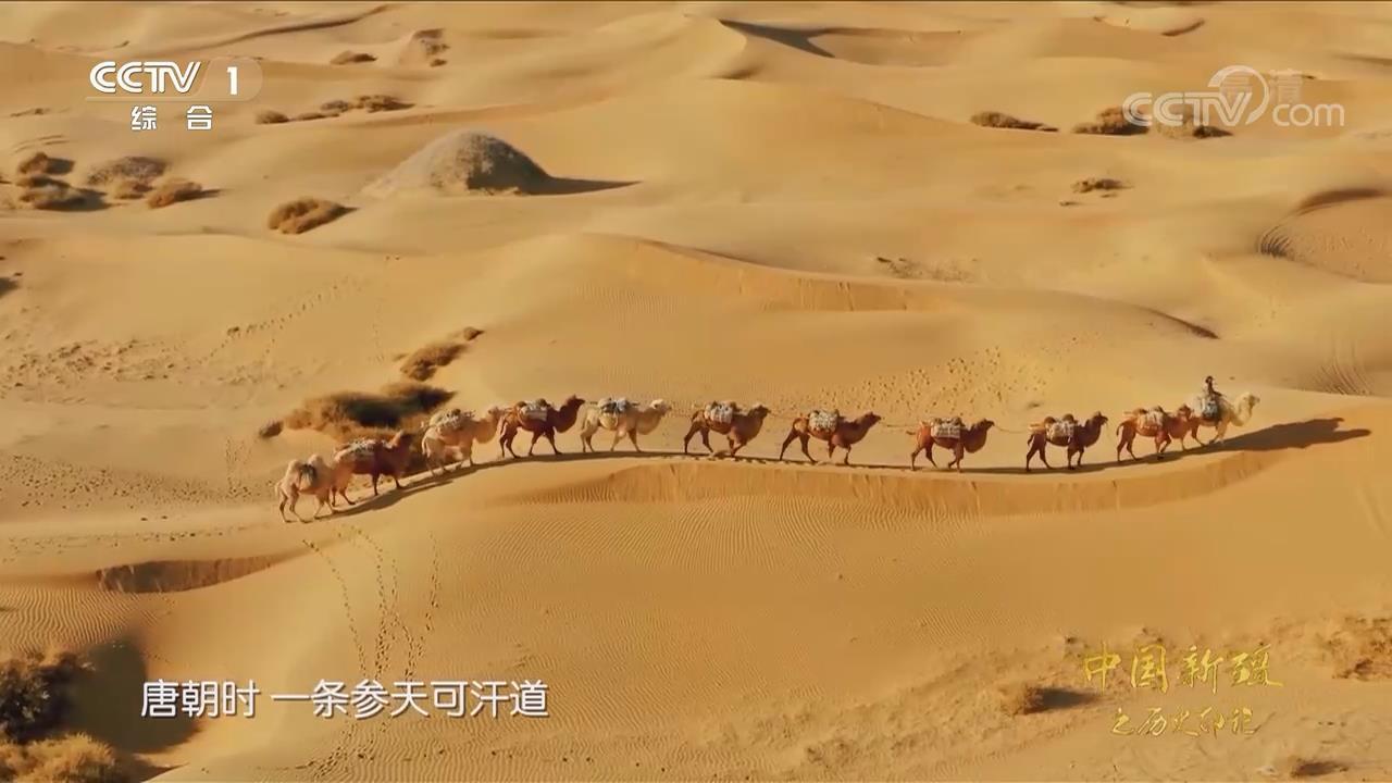 《中國新疆之歷史印記》 第二集 家國天下