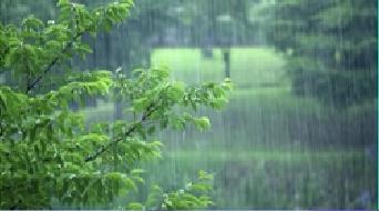 """江蘇""""入梅"""" 預計今年梅雨期降水量接近常年"""