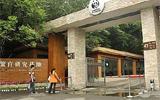 成都大熊貓繁育研究基地