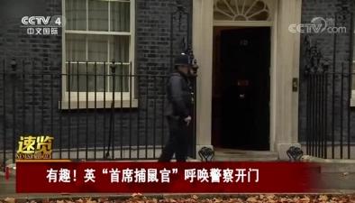 """有趣!英""""首席捕鼠官""""呼喚警察開門"""
