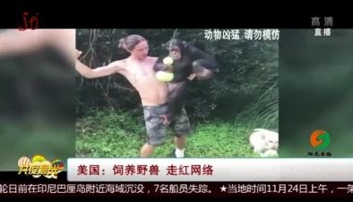 美國:飼養野獸 走紅網絡