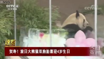賀壽!旅日大熊貓雙胞胎喜迎4歲生日