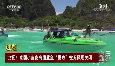 """封閉!泰國小皮皮島遭鯊魚""""圍攻""""被無限期關閉"""