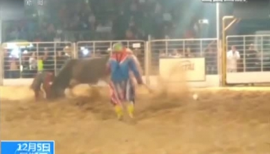 """巴西:意外! """"憤怒""""公牛將男子頂上天"""