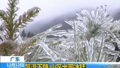 廣東:氣溫下降 山區出現冰挂