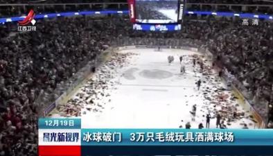 冰球破門 3萬只毛絨玩具灑滿球場