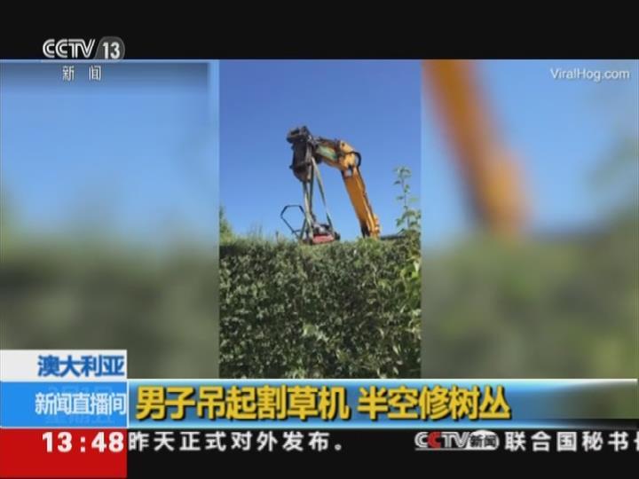 男子吊起割草机 半空修树丛