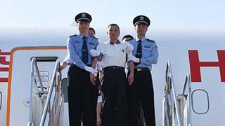 """""""百名紅通人員""""劉寶鳳回國投案"""