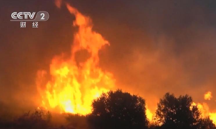 希臘埃維亞島山火已得到有效控制