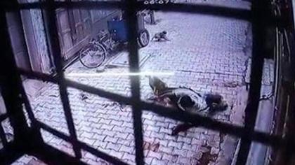 印度一男子家門口遭多只猴子襲擊 拼命掙扎逃脫