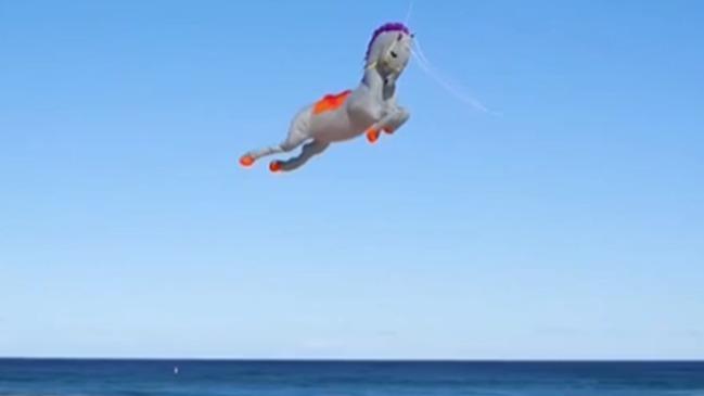 澳大利亞最大風箏節開幕 各色風箏爭奇鬥艷
