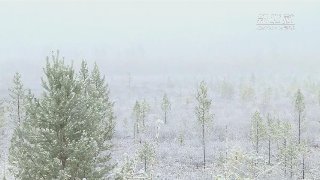 漠河迎來今秋首場降雪