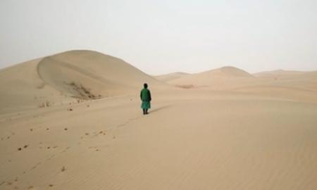 大漠築夢 向上而生