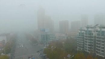 山東:大霧來襲 多條高速一度臨時封閉