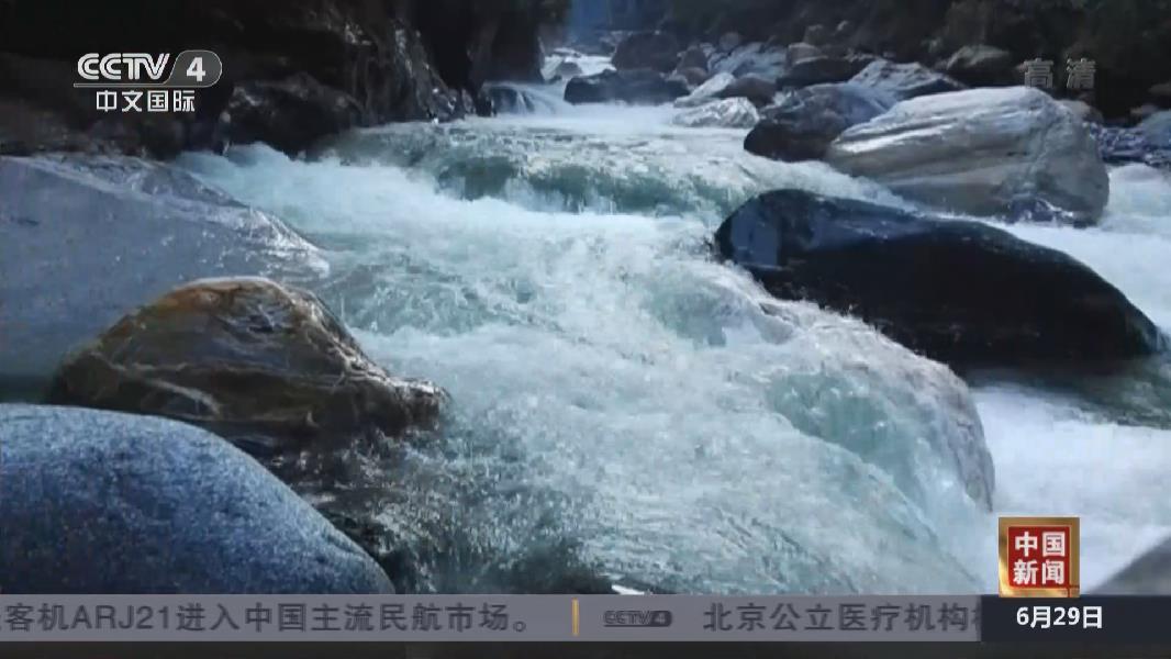 """中國科研人員發現""""隱世""""百年的物種"""