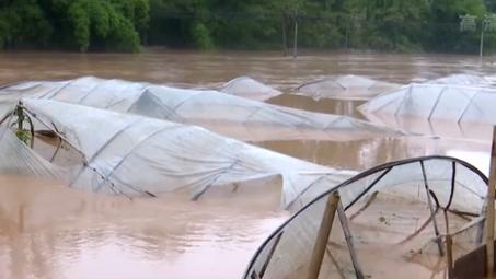 水利部:今年已有271例河流發生超警以上洪水