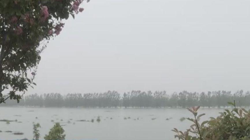 安徽潁上:記者探訪蓄洪區內莊臺