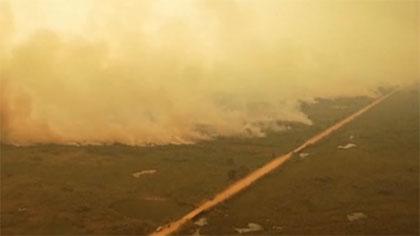 世界最大濕地遭遇創紀錄大火