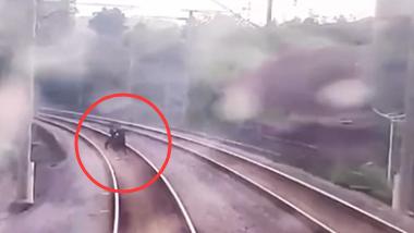 廣西欽州:兩少年為拍視頻進入鐵軌逼停動車 被拘留