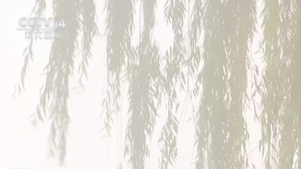甘肅慶陽出現降水降溫大風天氣過程