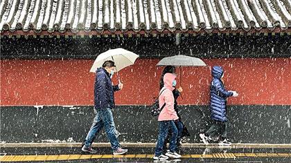 北京:今晨降下今冬首場雪
