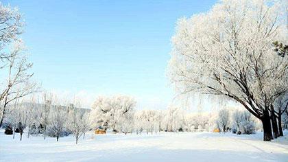 內蒙古:草原銀裝素裹 霧凇景觀美如畫