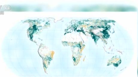 """研究顯示:中國植樹造林的作用""""被低估了"""""""